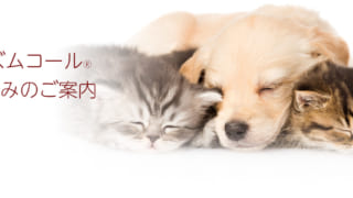 プリズムコール ペット保険