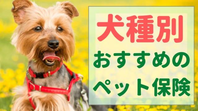 ペット保険 犬種別
