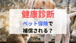 健康診断 ペット保険