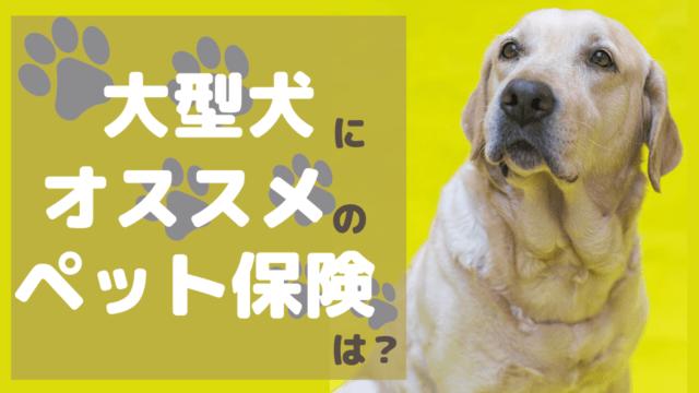 大型犬 ペット保険